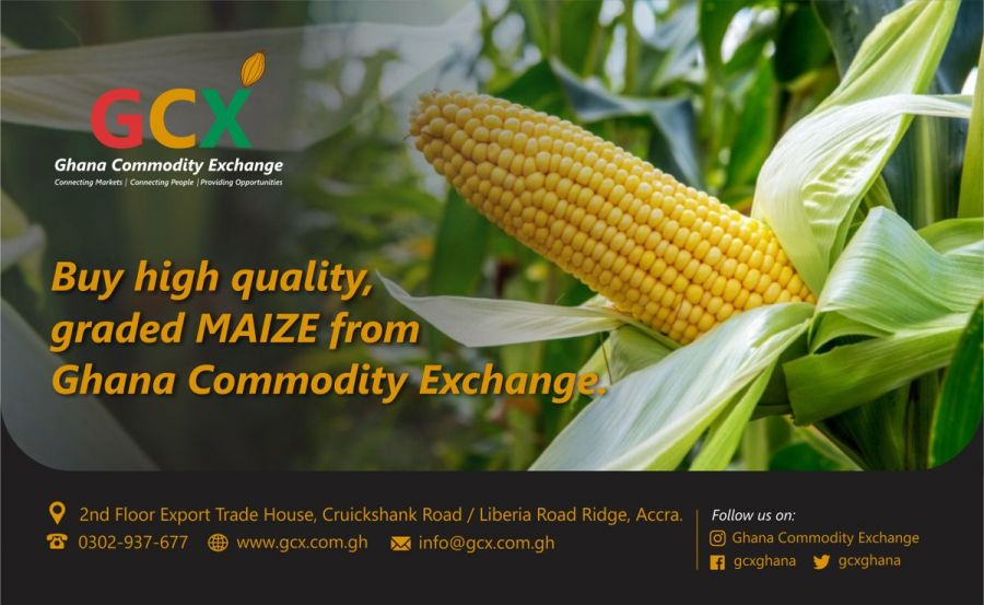 GCX Graded Maize image